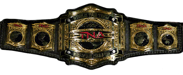 [Concours de popularité] Tag Team Frenzy 2013 TNA_World_Tag_Team_Championship