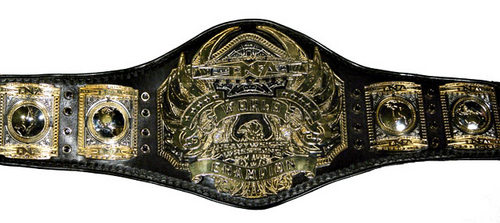 TNA_World_Heavyweight_Championship.jpg